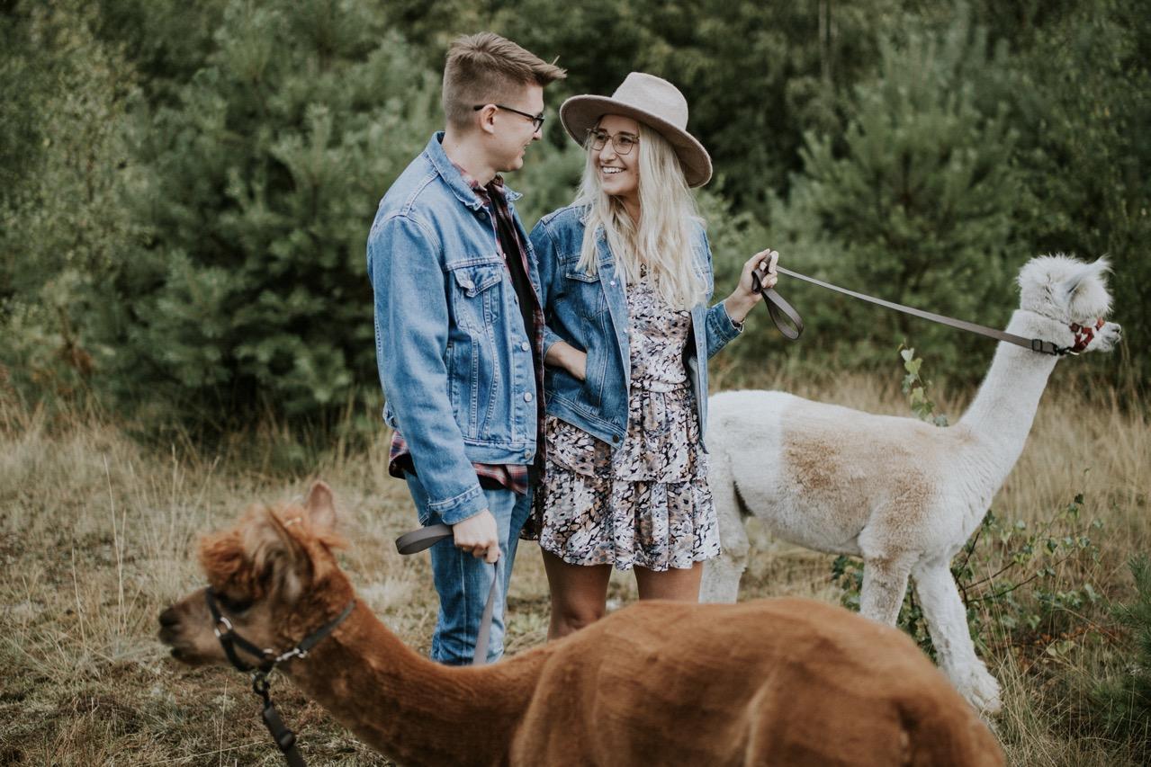 Romantyczna sesja narzeczeńska z Alpakami